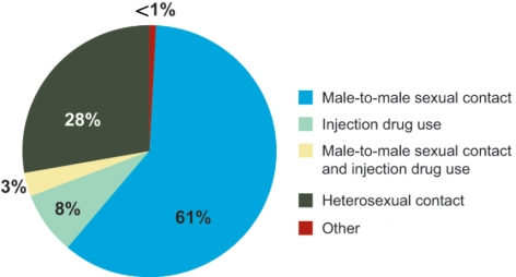 HIV Incidence by Category 2010