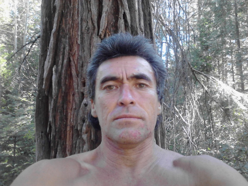 David 51 McCloud CA